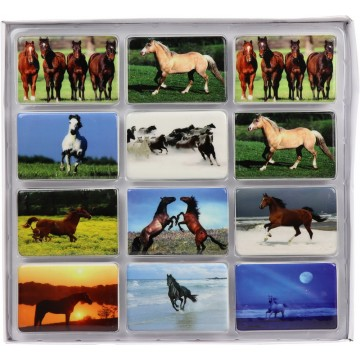 HORSE FRIDGE MAGNETS