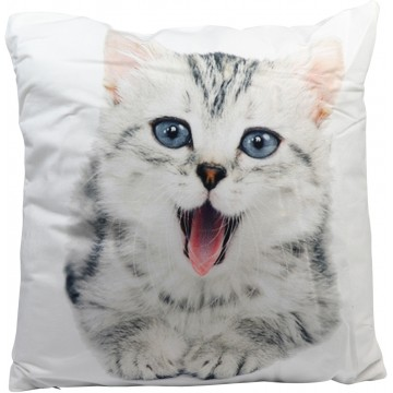 Cushion-Cat (2)