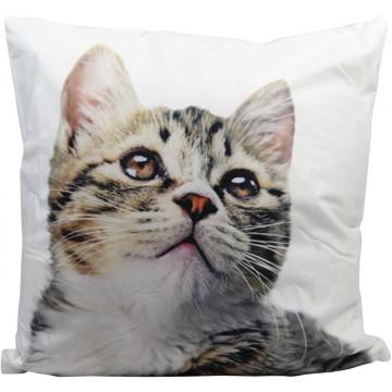 Cushion-Cat (2)